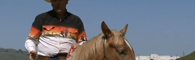Rick Gore Horsemanship