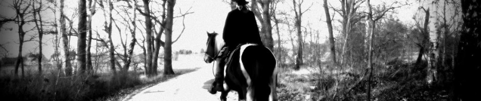 trail and ride – Nordheide – Seevetal – Winsen