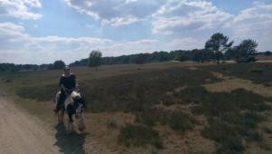 Anja mit Tinker Simon in der Heide