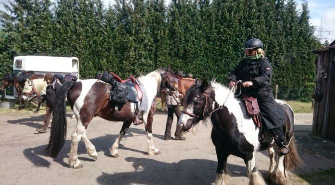 Pferdedeutsch – Deutsch