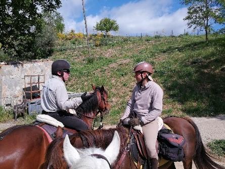 Ein Bild, das draußen, Pferd, Person, Gras enthält.  Automatisch generierte Beschreibung